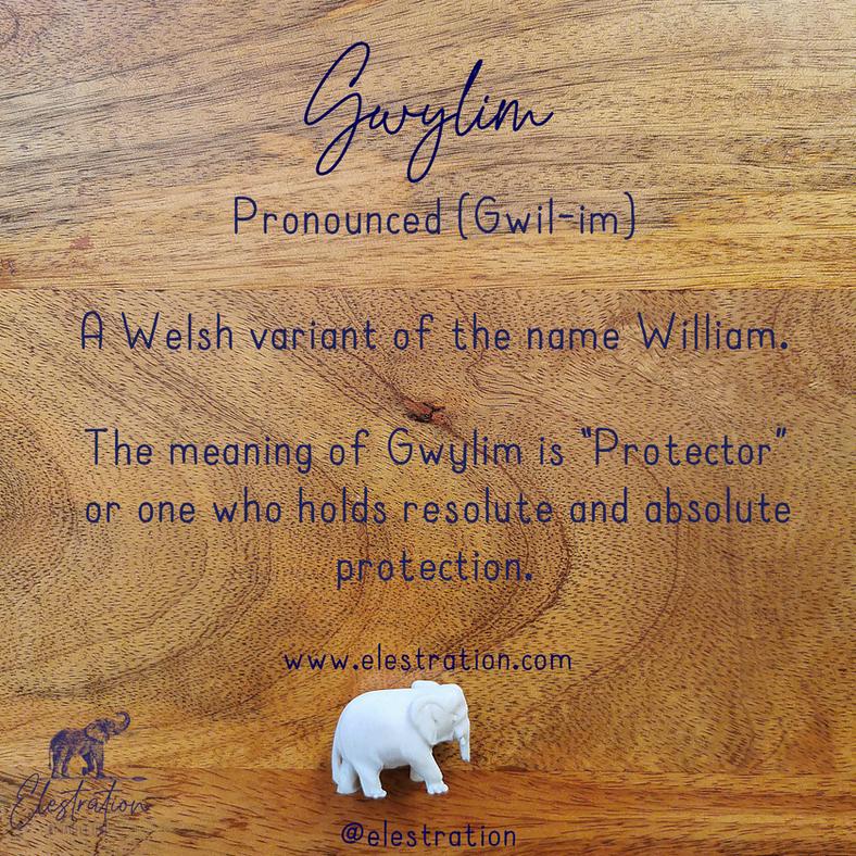 Elestration® Gwylim © Hayley C Lewis 2021.png.png