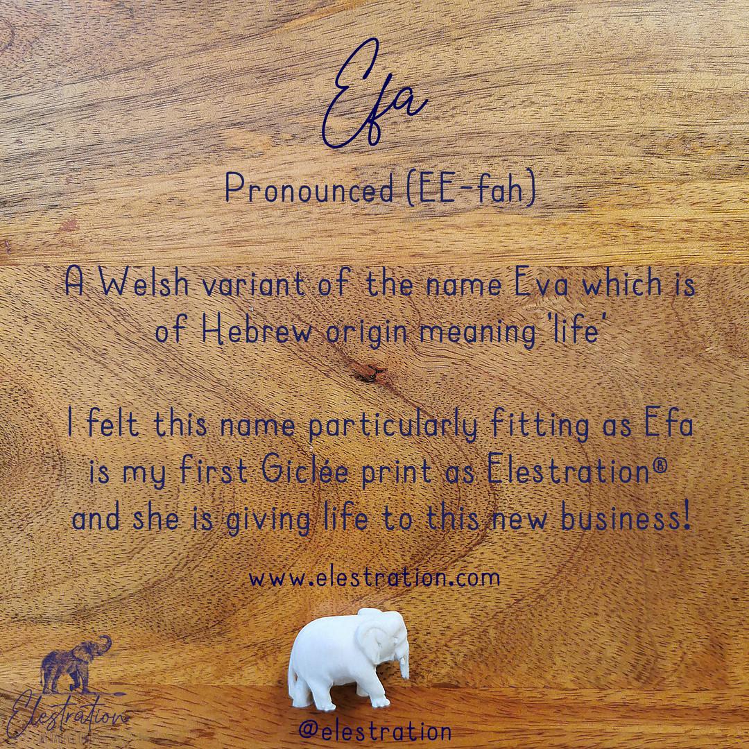 Elestration® Efa © Hayley C Lewis 2021