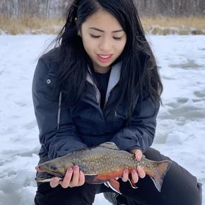 Trout Fishing Alberta