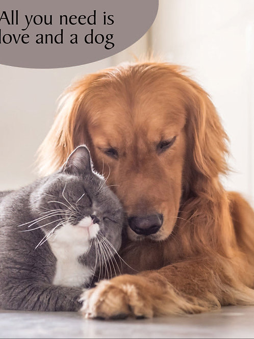 Card - Dog & Cat