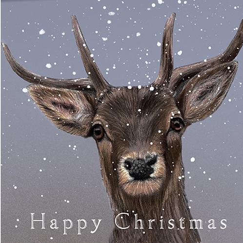 Reindeer Christmas Card Pack