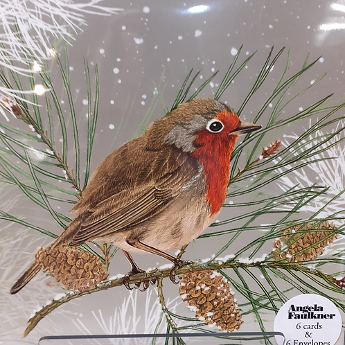 Robin Christmas Card Pack