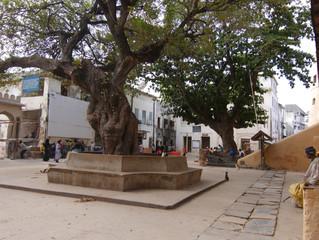 Mkunguni Square
