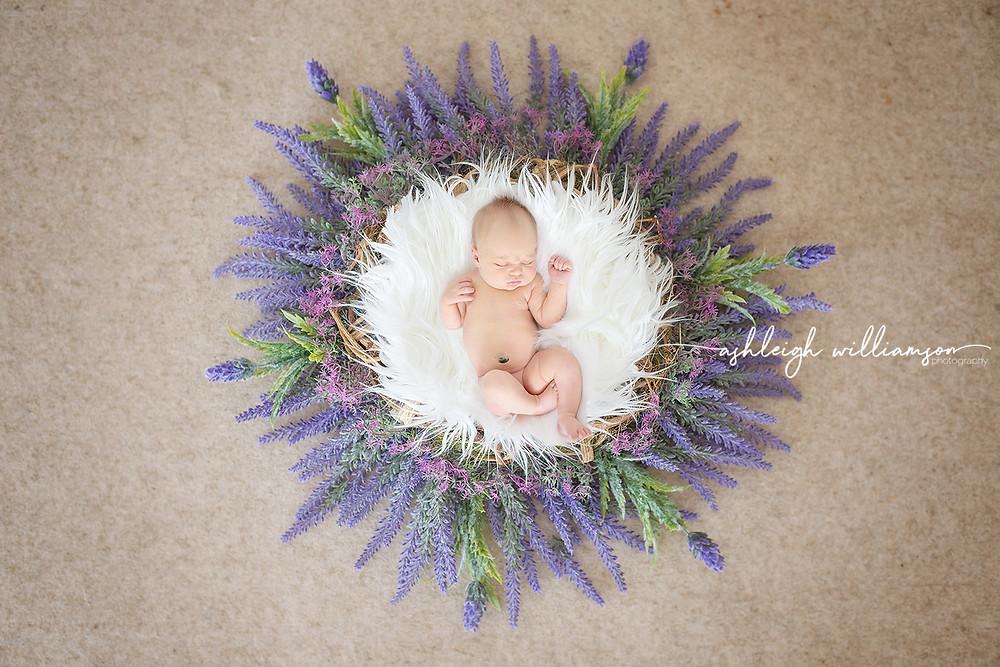 newborn baby girl flower wreath