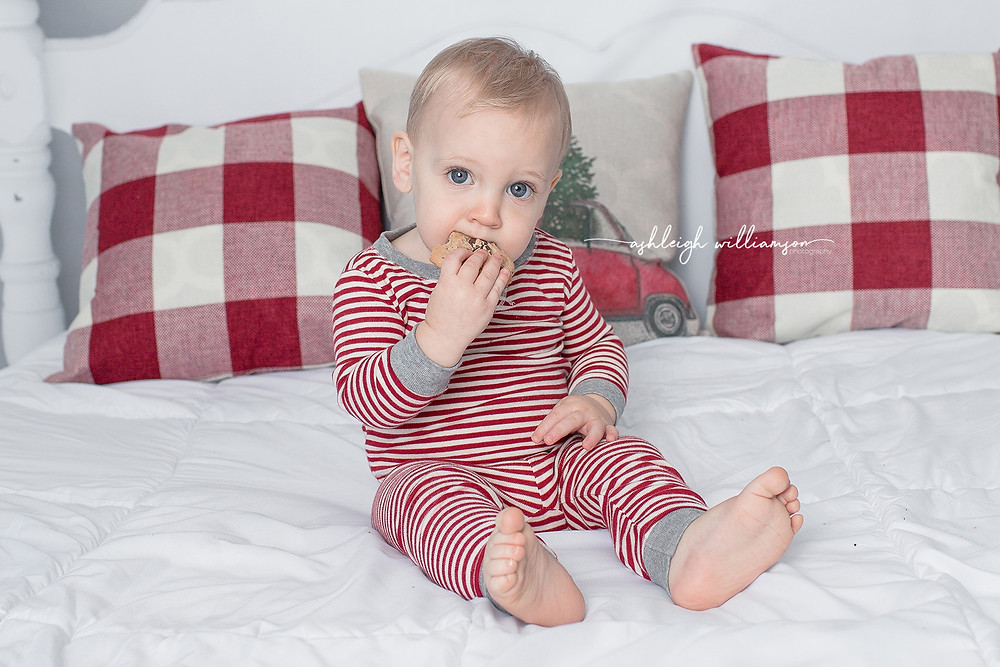 Holiday Mini, baby eating cookie