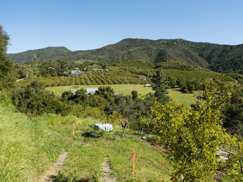 12_7243 Gobernador Canyon_0022.jpg