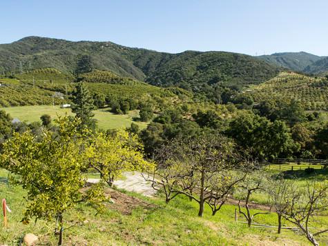 10_7243 Gobernador Canyon_0021.jpg