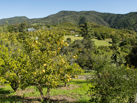 11_7243 Gobernador Canyon_0026.jpg