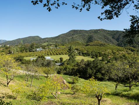 4_7243 Gobernador Canyon_0017.jpg