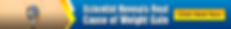 web-banner-728x90 (1).png