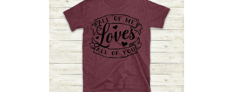 All Of My Loves All Of You T-Shirt