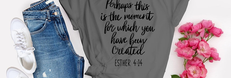 Perhaps This Is The Moment T-Shirt
