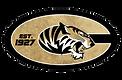 Metallic Logo.png