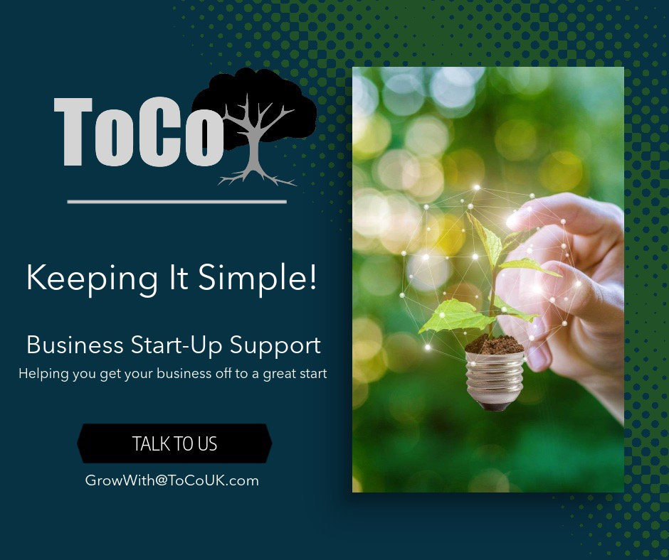 Start-Up Consultation