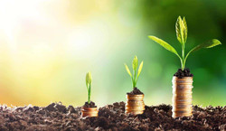 growing-money.jpg