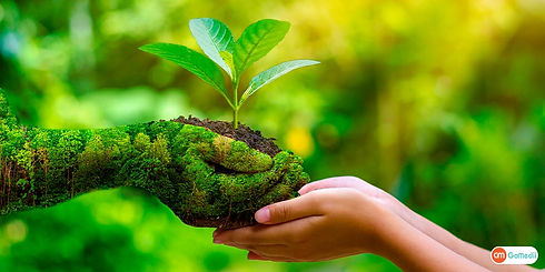 Pledging-To-Protect-Nature-On-World-Envi