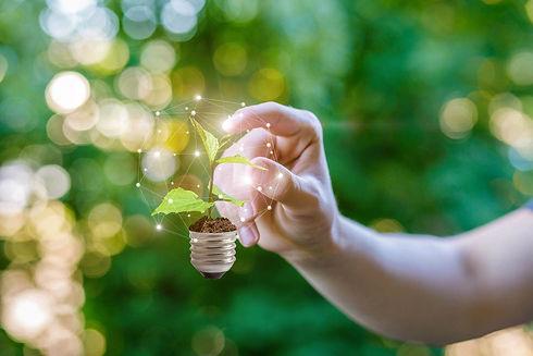 green idea.jpg