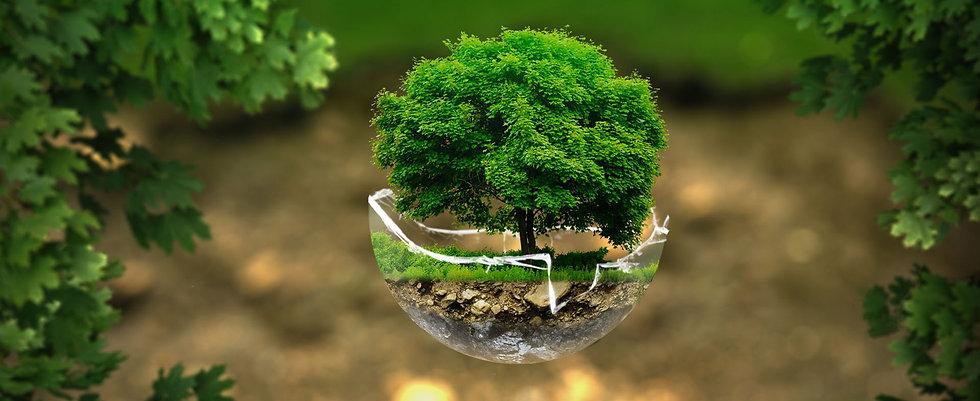 slide-green-ideas.jpg