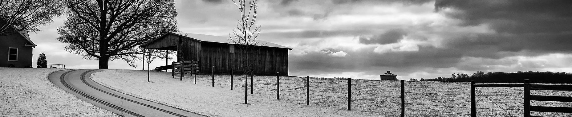 farm black and white.jpg