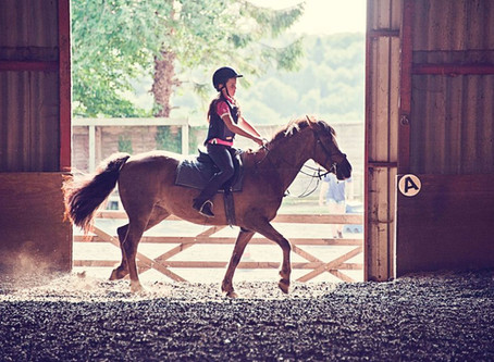 Horse Riding may improve your child's intelligence