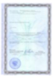 Лицензия 002.jpg