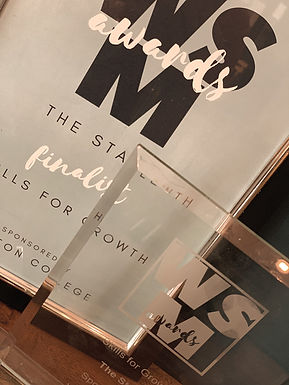 WsM Business Awards
