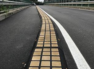 Biker-Cordolo per pista cliclabile.JPG