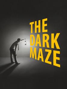 Dark Maze Pass