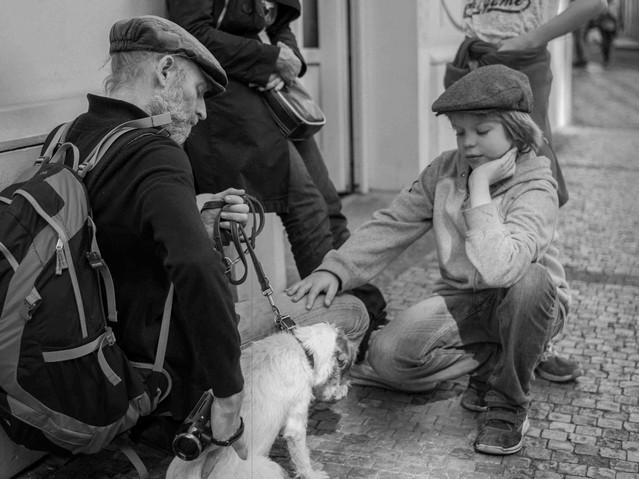 Petting Dog, Prague. August 25, 2014.jpg