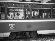 Woman on Tram, August 26, 2014.jpg
