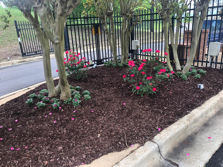 Flowers & Mulch