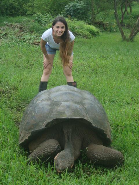 Si! por 3 dólares tenés la posibilidad de estar menos de un metro de una tortugota