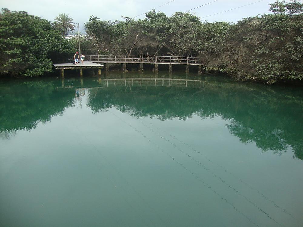 Laguna de las ninfas, puerto ayora, isla santa cruz, Galápagos, Ecuador Sudamérica