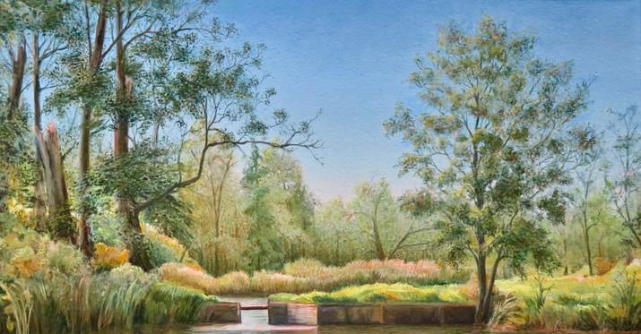 The Lake in the Park, Bugaj