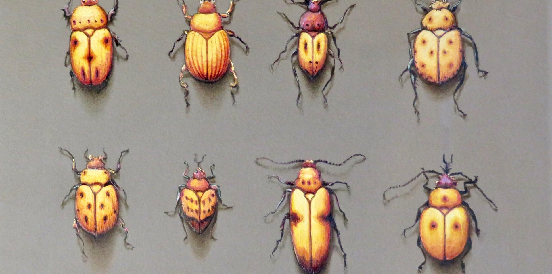 Gold Beetles