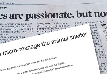 Pueblo, Colorado Update: Chieftain Gives Ink to PETA, Won't Print No Kill Advocate Op-Ed
