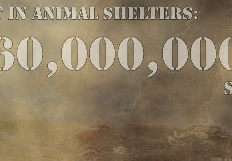 Regressive Shelters Have Killed 60 Million Animals Since 2001
