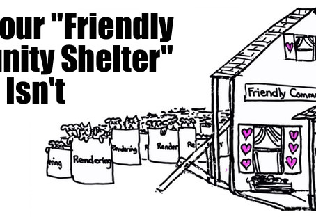 When Your Friendly Community Shelter Isn't