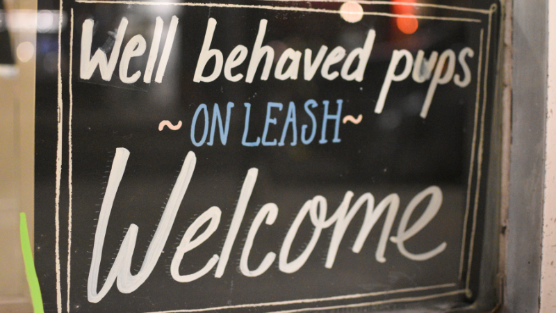 Storefront sign that reads well behaved pups on leash welcome