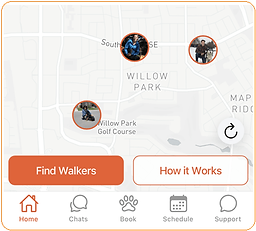 Graphic how to book a dog walk.png