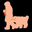 Man walking a bernese mountain dog