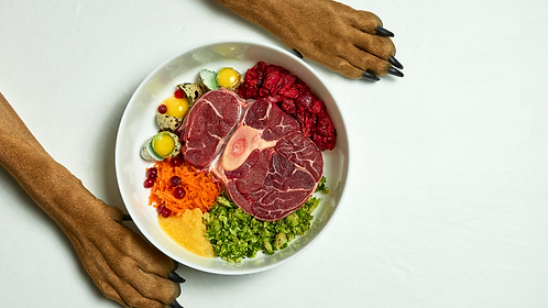 Bowl of healthy raw dog food between two front dog paws