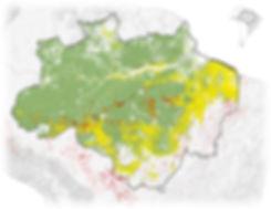 deforestation-Artboard_1_copy_2.jpg