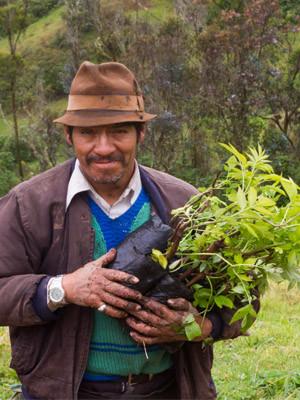 A landowner participates in the FCT silvopastoral initiative.