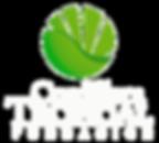 FCT_logo_square WHITE 2.png