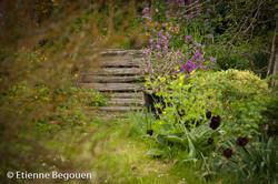 Confidences maitre jardinier (13)