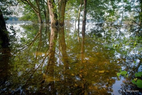 Lac de Maine - 7.jpg