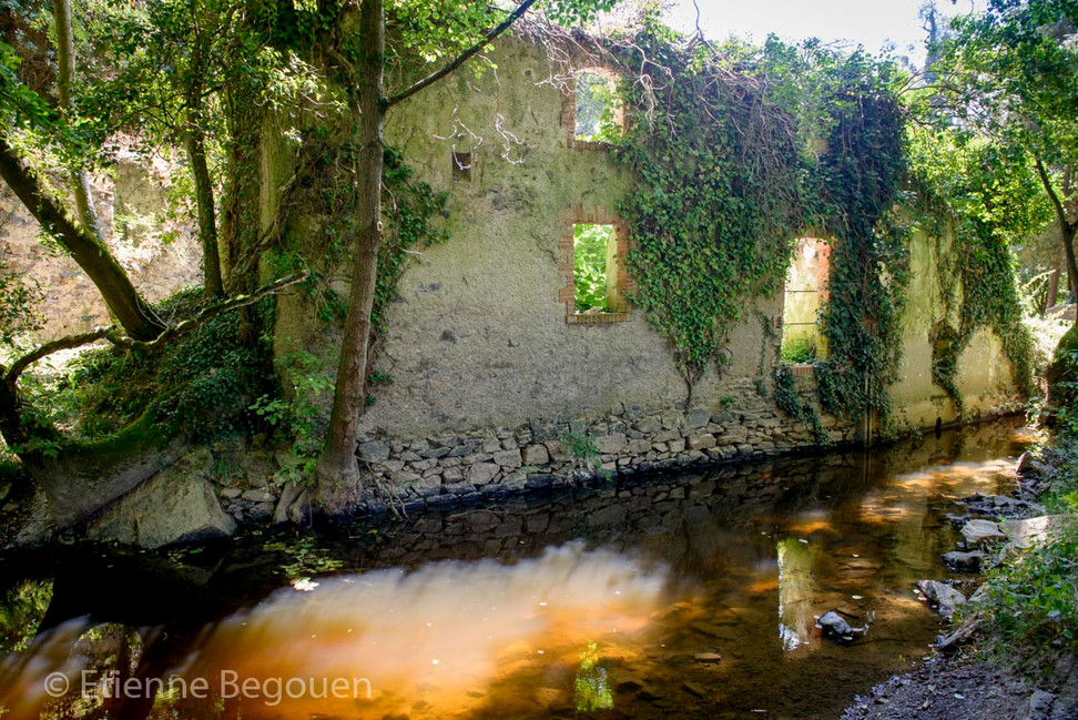 DEP49_Valleedel'Evre_©Begouen-23.jpg