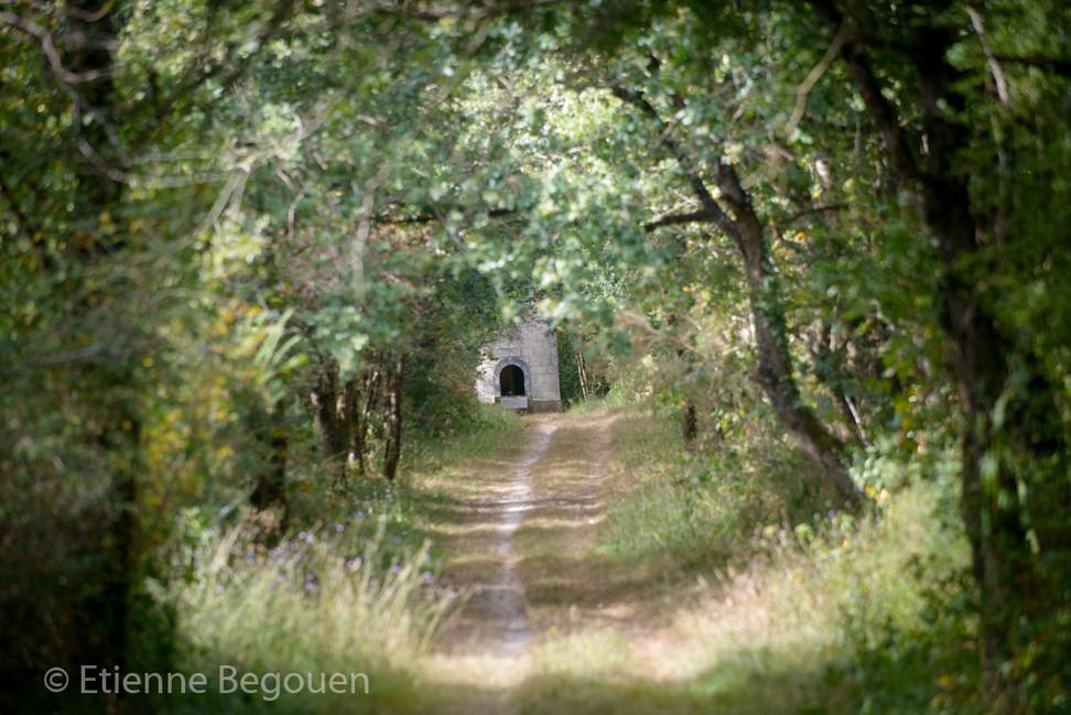 DEP49_BoisetlandesdeLouerre_©Begouen-40.