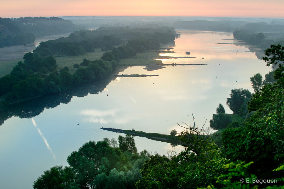 Vallee de Loire en aval